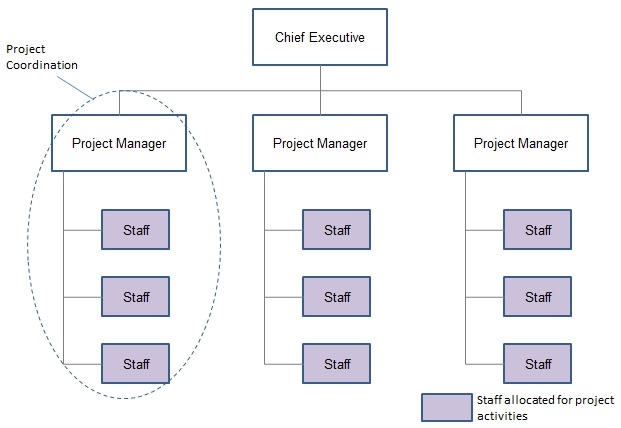would a project management organisation be In this post, we are going to be looking at the project management organizational  structure from two angles we will be studying them in terms of.