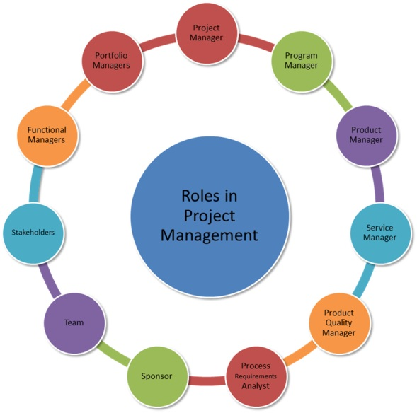 roles in project management io4pm international organization for